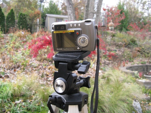 november-11-2008-canon-024