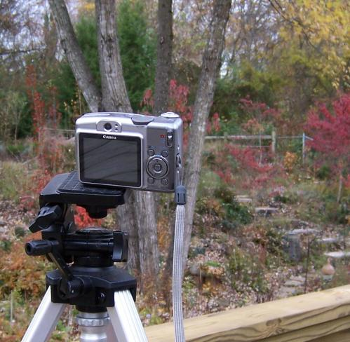 november-11-2008-kodak-002-2