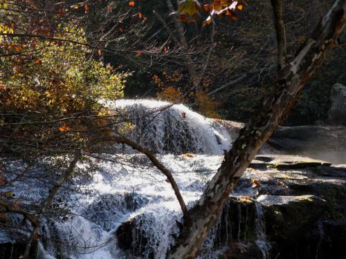 november-6-2008-tellico-plains-058