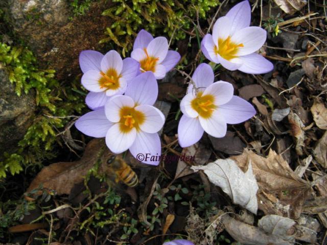 february-5-2008-035-2