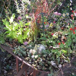october-19-2008-012-2