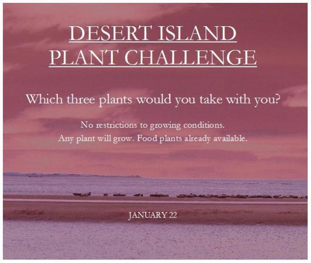 desert_island_plant_challenge