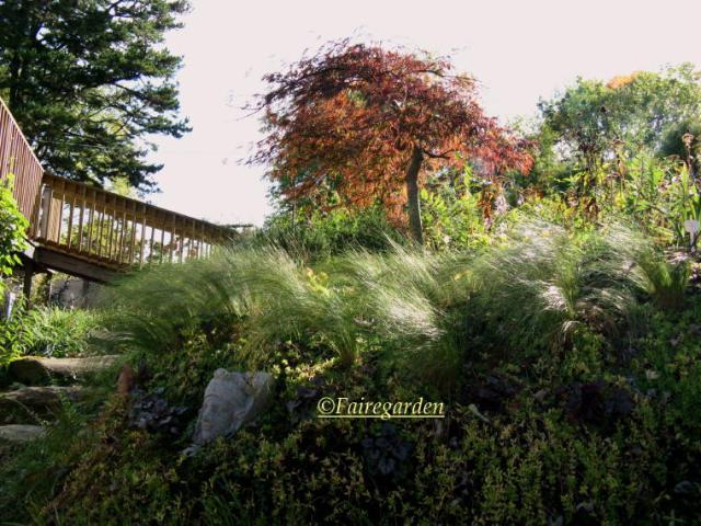 october-28-2008-008-2