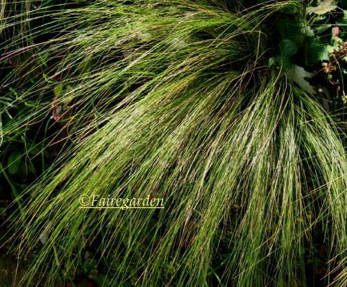 october-28-2008-011-2