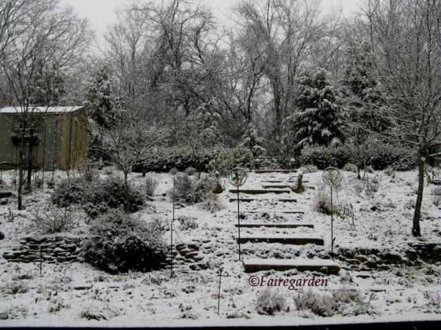 february-2-2009-snow-020-2