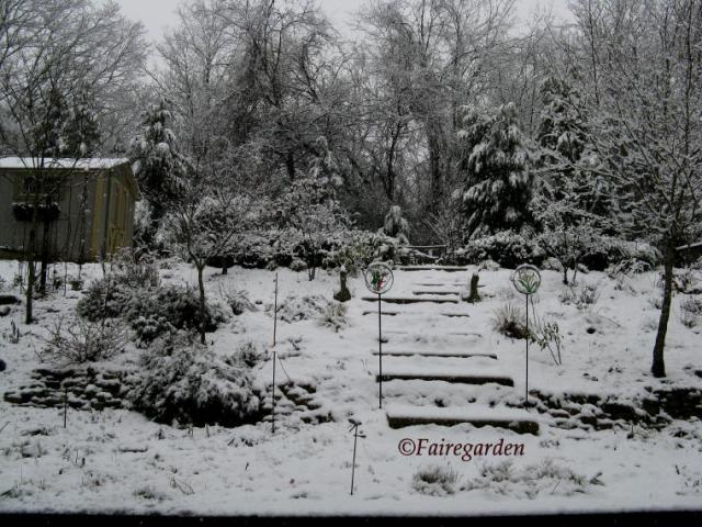 february-2-2009-snow-030-2