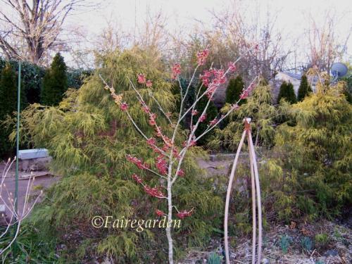 february-23-2007-028-2
