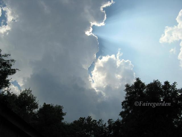 August 12, 2009 015 (2)