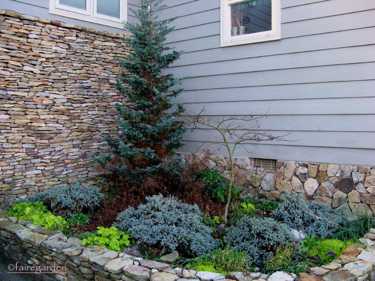 how to have winter interestshrubs small and large  fairegarden, Natural flower