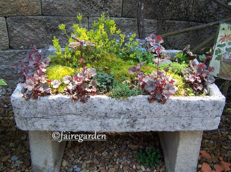 How To Make A Hypertufa Trough